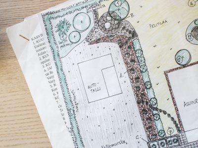 Pihasuunnitelma käytäntöön - Teri-Talot