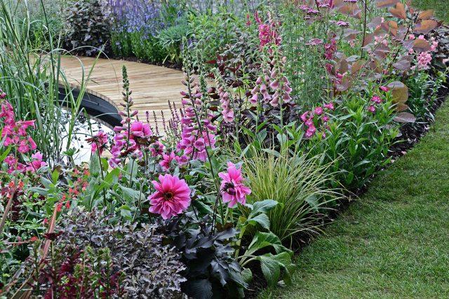 Vinkkejä puutarhan suunnitteluun